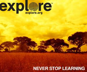 explore safari box